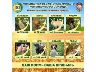 Комбикорм , зерно, отруби