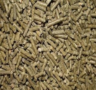 zmyx-rapsovyi-protein-ot-37-39-ot-1750-rkg-big-0