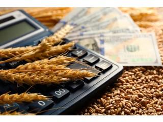 Покупаю пшеницу
